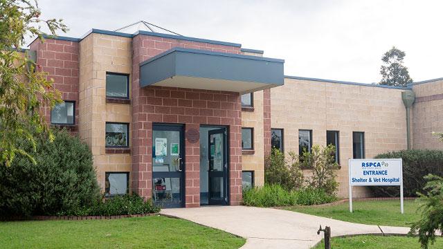 Veterinary Hospitals | RSPCA NSW
