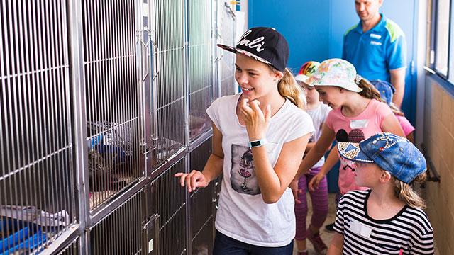 RSPCA NSW School Holiday Program