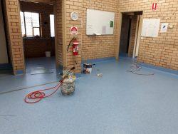 RSPCA NSW renovations