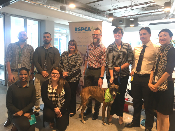 RSPCA NSW Corporate Visit March to April