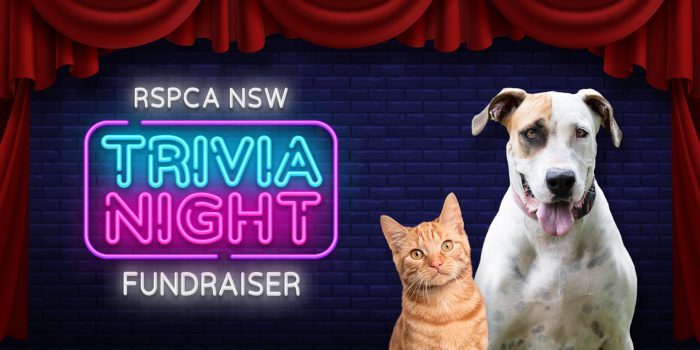 Join Us For The Rspca Nsw Online Trivia Night Fundraiser Rspca Nsw
